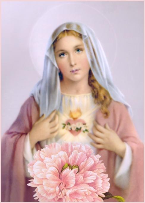 Holy Mary Wallpaper Hail Mary Full of Grace