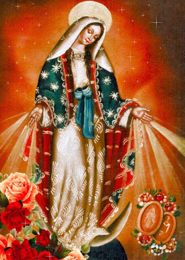 graphic regarding 54 Day Rosary Novena Printable identified as The Rosary Novena toward Our Woman